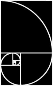 Fibonacci bluza damska ciąg Fibonacciego Petrichor
