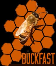 Koszulka Buckfast