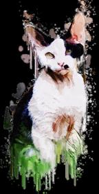 Kot koszulka z nadrukiem