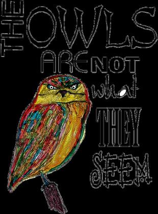 TWIN PEAKS Sowy nie są tym, czym się wydają