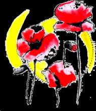 Koszulka Poppies White damska