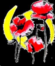 Kubek Poppies Classic