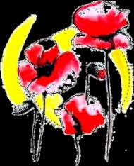 Poszewka Poppies
