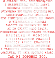 "Koszulka damska ""PW"""