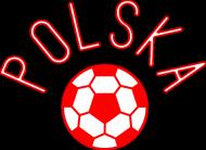 Piłka - koszulka kibica męska Prawo Wilka