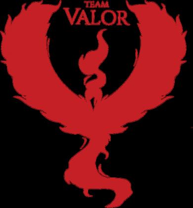 Bezrękawnik Team Valor BL/WH