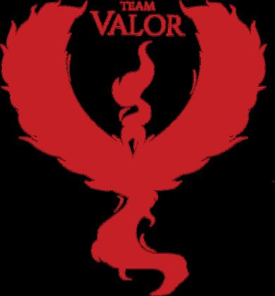 Bluza z Kapturem Team Valor White