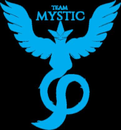Bluza Team Mystic BL/WH