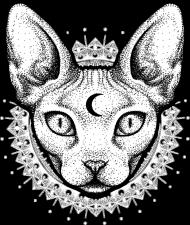 MOON CAT - koszulka kot sfinx w Kosmosy