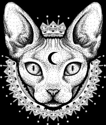 BLUZA MOON CAT