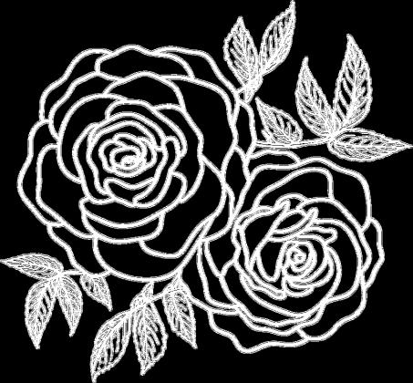 ROSES - czarna ekotorba Kosmosy