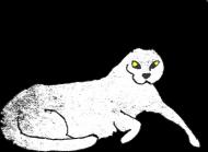 Torba z Kotem Bez Uszu