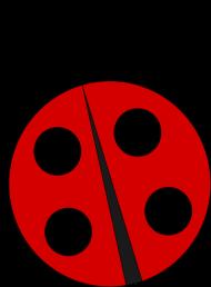 Koszulka z biedronką (małą)