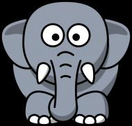 Koszulka ze słonikiem