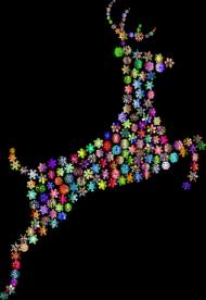 Koszulka Kolorowy Jeleń