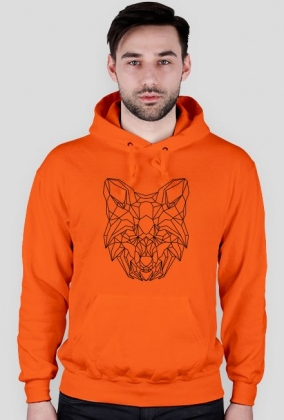 Geometric Fox / Lis