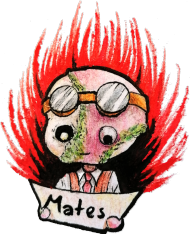 MatesArt koszulka męska dwukolorowa