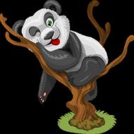 Koszulka dziecięca Panda na drzewie