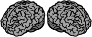 Brainboobs