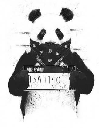 Panda Krime