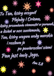 KOSZULKA damska To Ten, który stworzył Plejady i Oriona