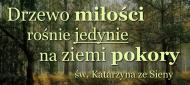 KUBEK z cytatem - św. Katarzyna