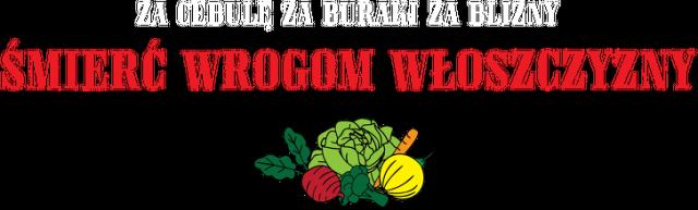 Koszulka wegańska/wegetariańska: Za cebulę Za buraki Za blizny Śmierć Wrogom Włoszczyzny