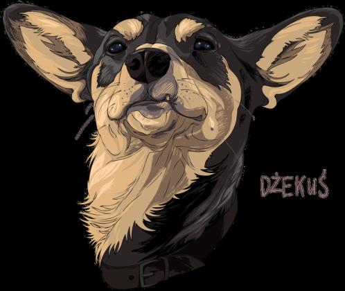 bluza damska, everydog, pies, kudnel, dżekuś