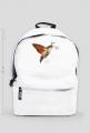 plecak, owady, motyl, fruczak gołąbek, polski koliber, entomologia