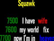 Małżeński Squawk