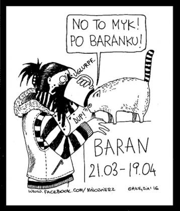 Zodiak BARAN Kubas jednostronny z datą.