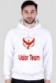 Valor Team Pokemon Go