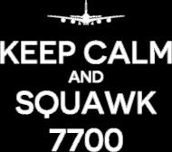 AeroStyle - Keep calm and squawk 7700, męska