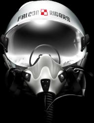 AeroStyle - longsleeve męski Falcon Riders
