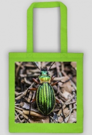 Beetle bag