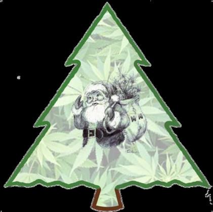 Bluza męska rozpinana Mikołaj