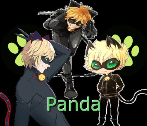 Poduszka Chat Noir Panda