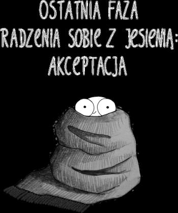 KOC Bluza damska czarna