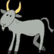 BODY z kozą