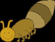 BODY z mrówką
