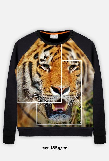 Bluza Męska Tygrys