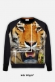 Bluza dziecięca Tygrys