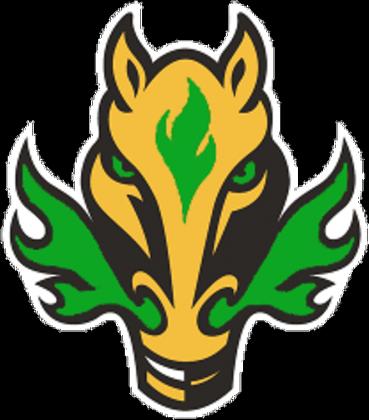 Bluza Team Fire Horse Green [Jungler Jester]