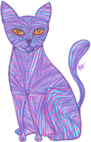 Pozytywny kot