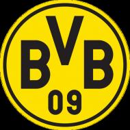Kubek BvB
