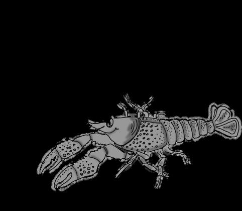 Znak Zodiak Rak
