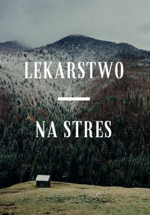 Lekarstwo na stres - bluza męska