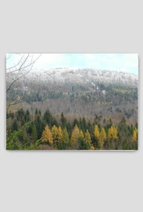 Puzzle: Na przełęcz Karkoszczonka