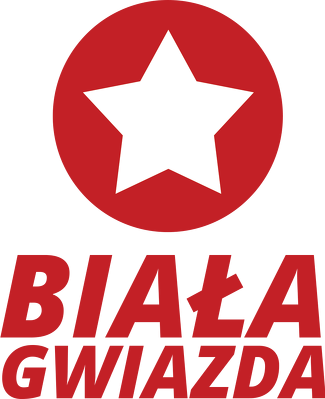 Bluza: Wisła Kraków - Biała Gwiazda