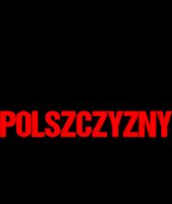Śmierć Wrogom Polszczyzny - Męski T-shirt (Jasny)